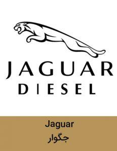 JAGVAR 231x300 - برند