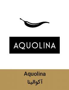 Aquolina brand 231x300 - برند