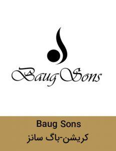 Baug Sons 231x300 - برند
