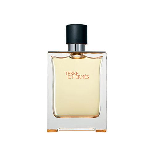 عطر ادکلن مردانه هرمس تق هرمس ادوتویلت ۱۰۰ میل Terre d'Hermes Hermès