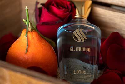 01 - عطر ادکلن برند الموندو